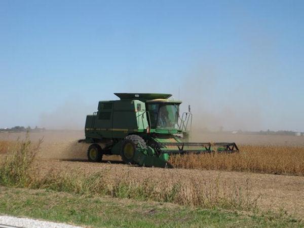 Stronghurst grain